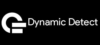 20190515171511-2._Dynamic_Detect.jpg